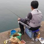 アオリイカ狙いで田ノ浦漁港