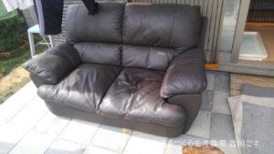 またまたサスケの新しいソファー