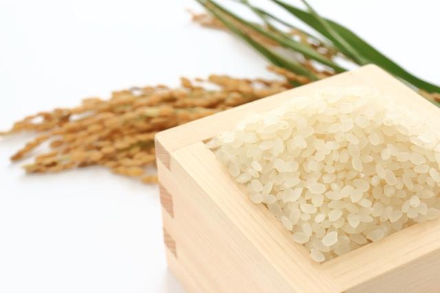 今年も特Aヒノヒカリを最高の旨さに育てる稲作に挑戦します