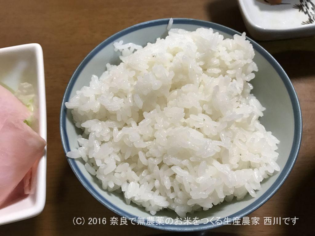 2016年産への字で作ったヒノヒカリ米   今年の新米を食べてみた