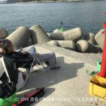 職場の仲間と釣り | 和歌山中紀でアオリイカ狙い