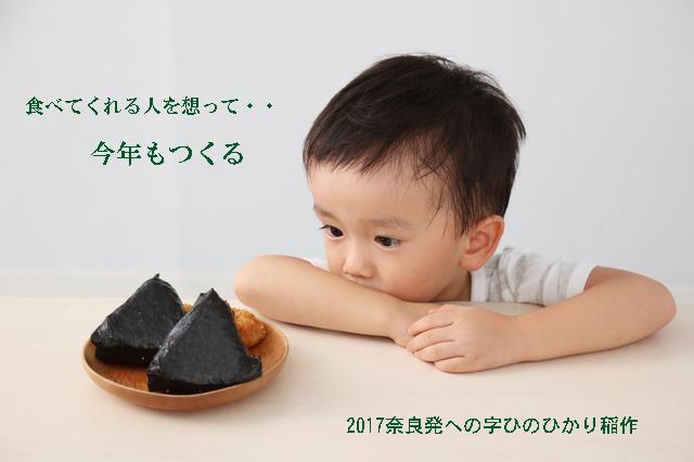 2017年のほぼ無農薬への字ヒノヒカリ稲作日記