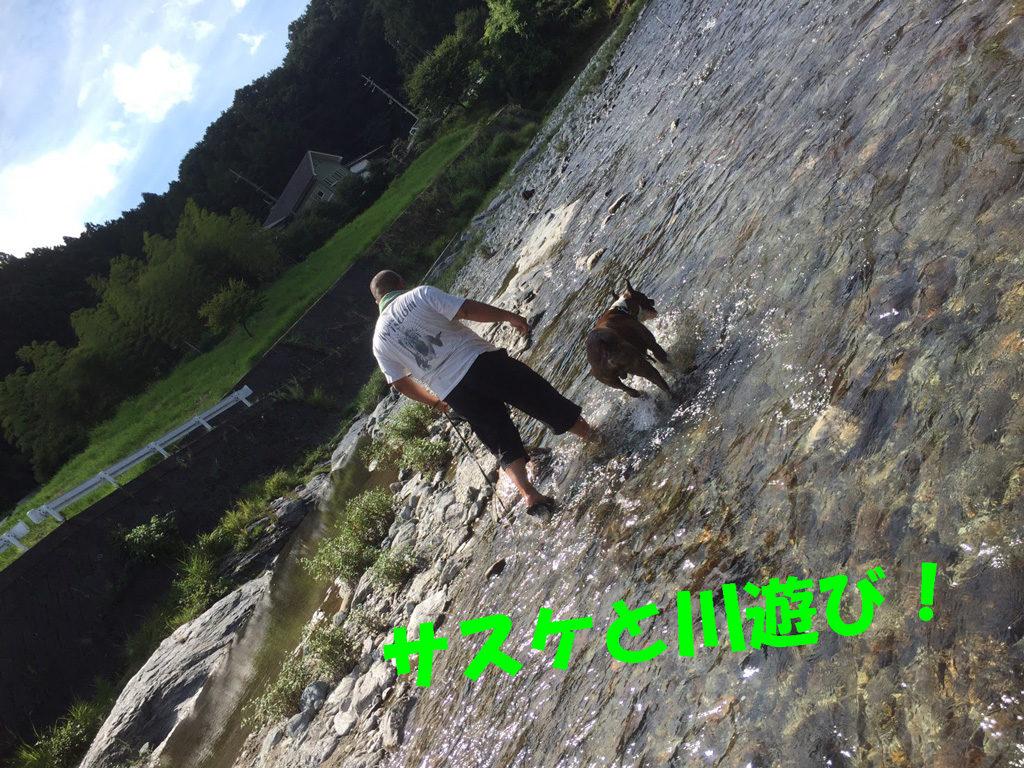 川遊びと温泉 | 奈良県吉野郡吉野町