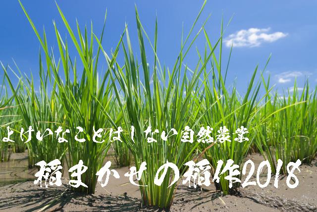 2018年の奈良発の限りなく無農薬なへの字農法によるヒノヒカリ稲作日記