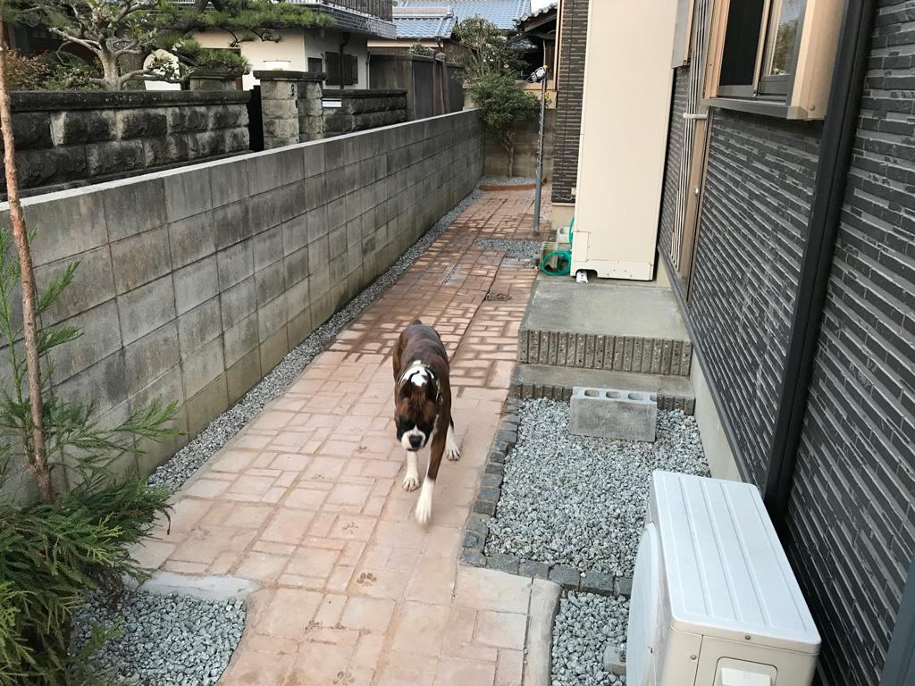 DIYで外構エクステリア   プラスチック型枠を使った庭のコンクリート土間舗装