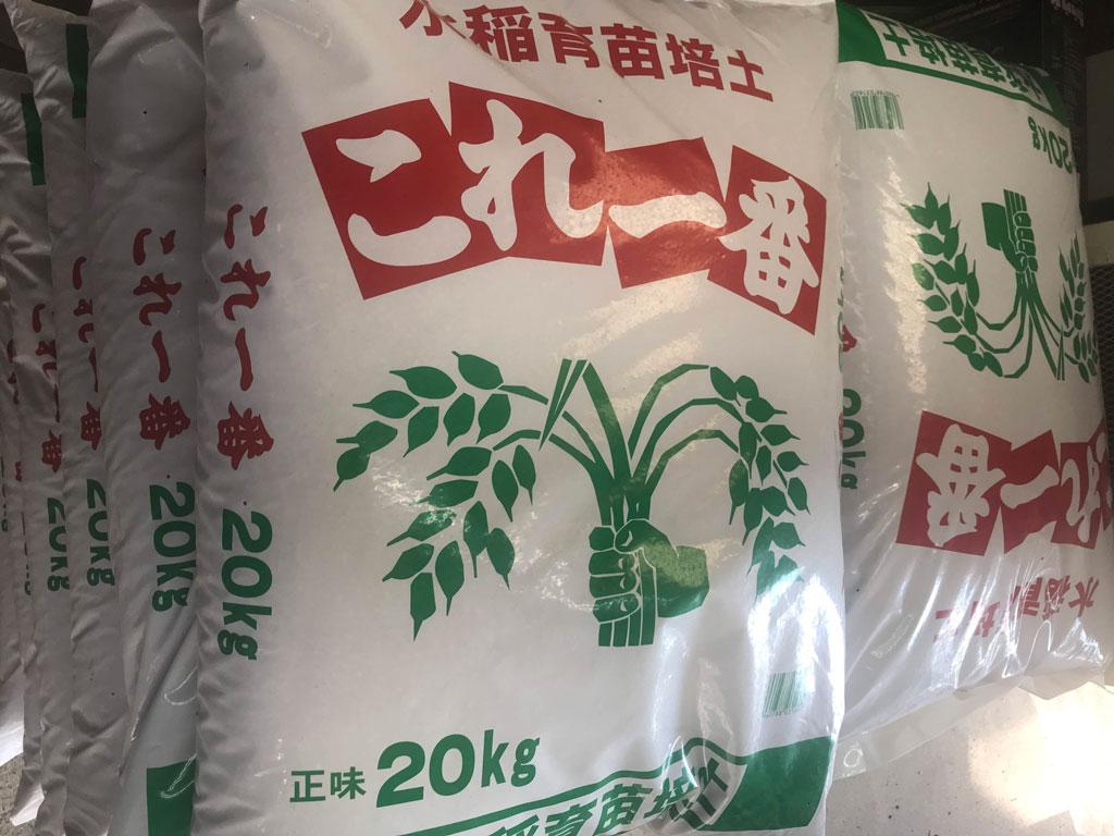 令和二年の稲作