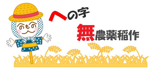 奈良で無農薬米 稲作農家 西川健次