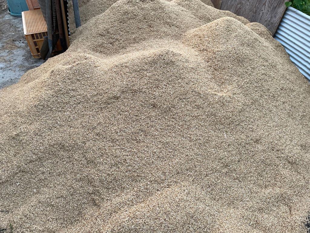 籾の乾燥とうす引き作業